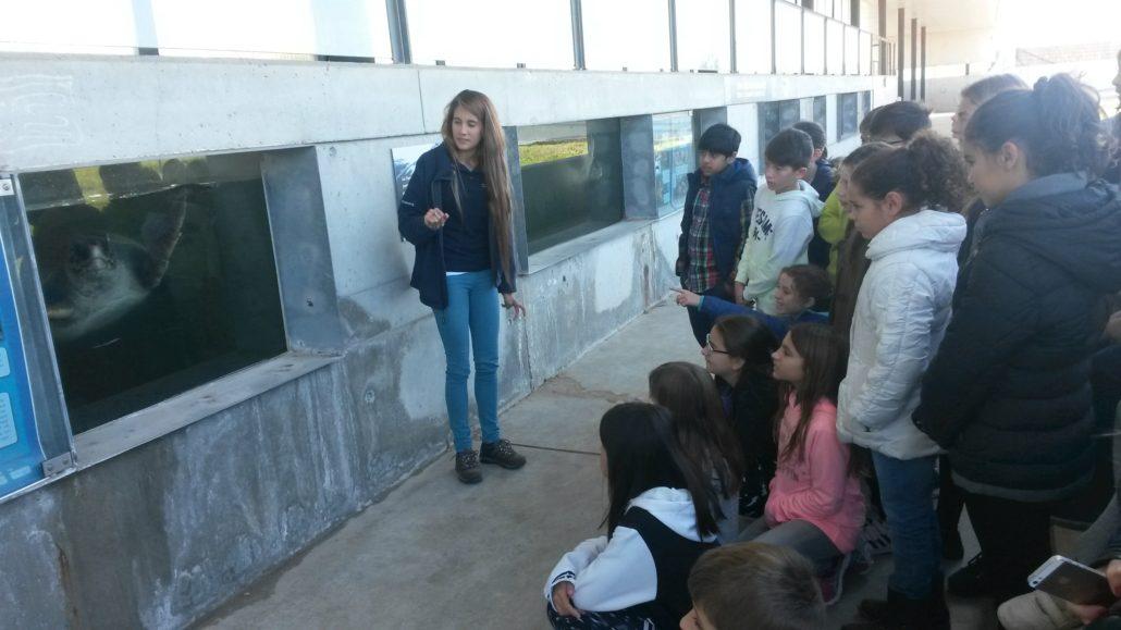 escola_nova_sortida_cram_7