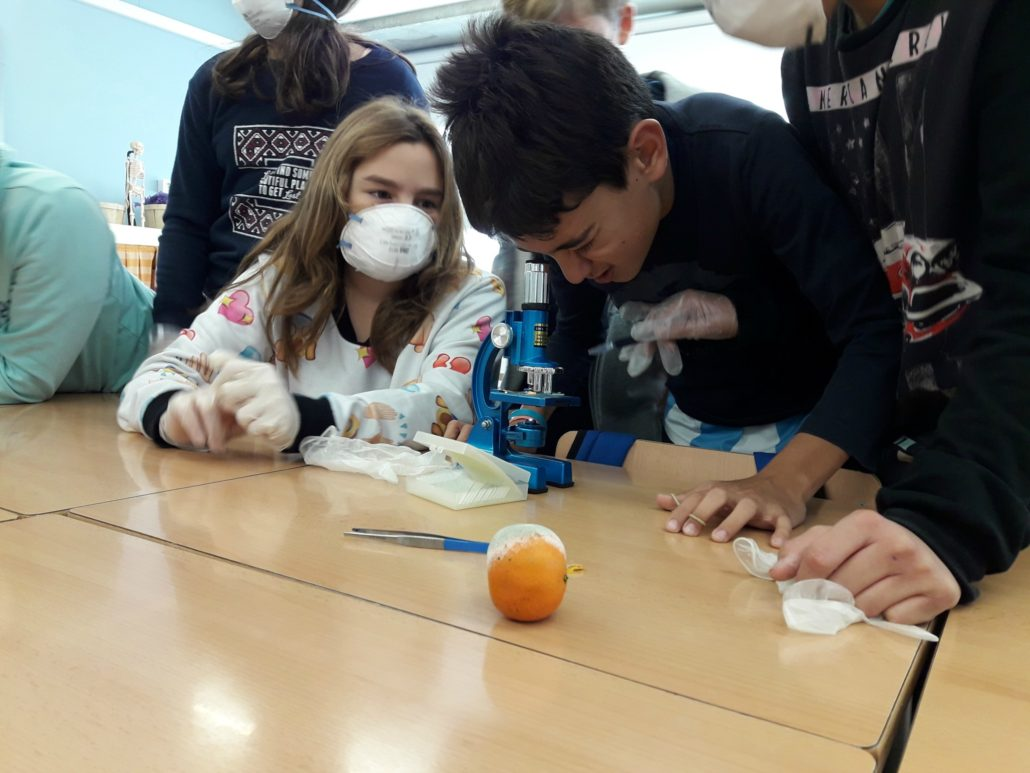 escola_nova_microbiolegs_6ea_2
